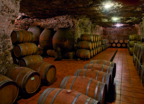 La Unión Europea incluye novedades en las ayudas a la promoción del vino