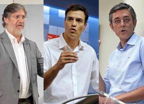 Madina sólo logró más avales que Pedro Sánchez en 5 comunidades entre las que no está País Vasco
