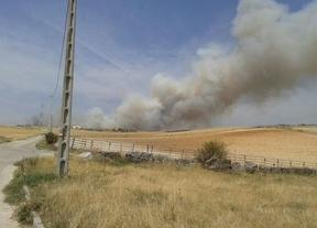 Un millón de euros para restaurar las zonas afectadas por los incendios de Aleas y Bustares