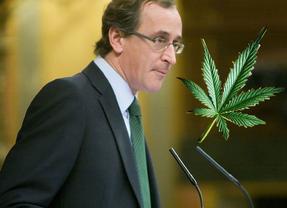 El cannabis seguirá siendo ilegal en España, a pesar de ser un país líder en consumo