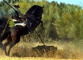 Apelan al catecismo para pedir que se prohíba cazar jabalíes con lanza
