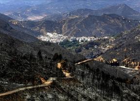 Arias Cañete espera que Bruselas 'ayude' con los daños del incendio de Hellín