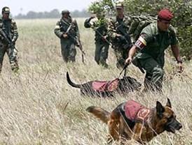 Consejo de Seguridad máxima instancia contra el crimen en México, obligado a responderle a la sociedad