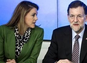 El PP revisará sus cuentas y vuelve a desvincular el dinero de Bárcenas del partido