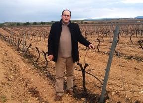 El albaceteño Joaquín Vizcaíno, nombrado responsable estatal del sector vitivinícola de COAG