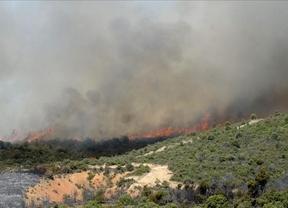 500.000 euros para restaurar las zonas quemadas en Guadalajara el pasado verano
