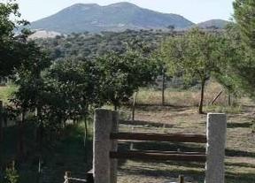 Tres organizaciones ecologistas trasladan a la Diputación de Toledo su rechazo a un minizoo en El Borril