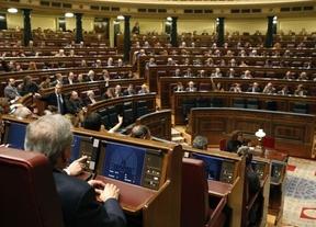 IU exige al Gobierno que de ejemplo con una rebaja salarial mientras los diputados se 'autorecortan'