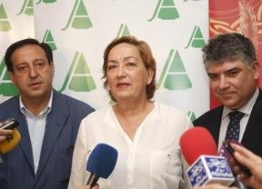 La Junta destinará seis millones de euros a promocionar el vino fuera de España