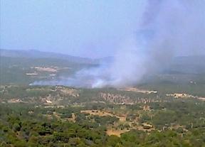 El fuego en el Real de San Vicente, a la espera de ser estabilizado