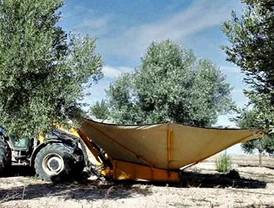 Aguilar reclama a Bruselas activar las ayudas al aceite de oliva