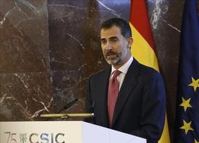 El Rey Felipe VI se recorta el sueldo un 20%: cobrará en total 234.204 euros en 2015