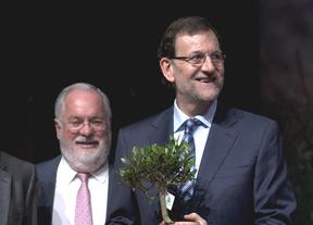 ¿'Efecto Cañete' o Rajoy?