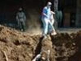 Descubren nueve cuerpos en narcofosa de Michoacán