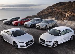 Audi suma 41 versiones de gamas ultra, con las que distingue las versiones TDI y TFSI más eficientes