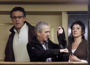 Lo que Amaiur deja de ganar por no tener grupo parlamentario propio: 600.000 euros
