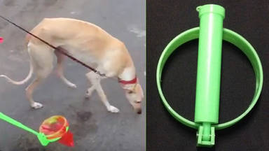 Inventan un recogedor de caquitas de perro para evitar agacharse al suelo y mancharlo