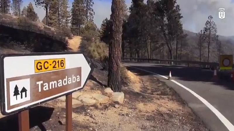 El Gobierno canario considera el incendio de Gran Canaria oficialmente estabilizado