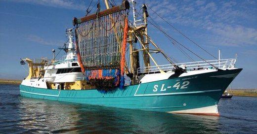 El Europarlamento frena la pesca con electrocución que denuncian ecologistas y animalistas