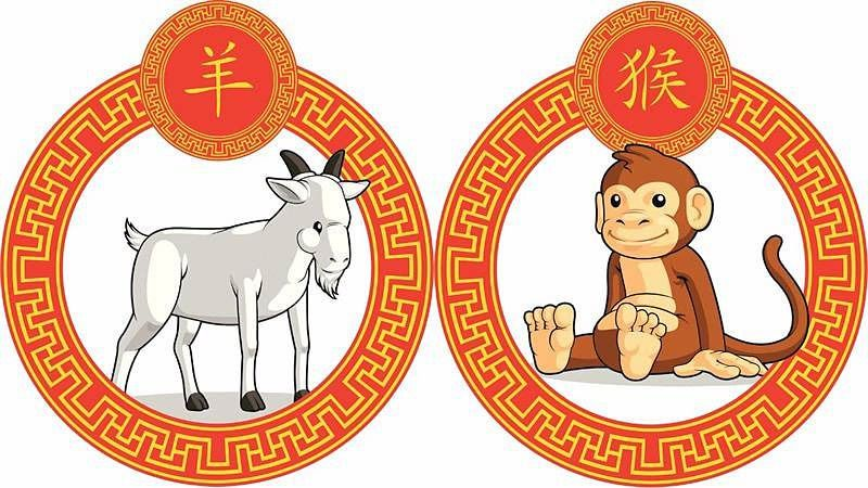 Horóscopo Chino Qué Animal Eres Descubre Tus Predicciones Diariocrítico Com